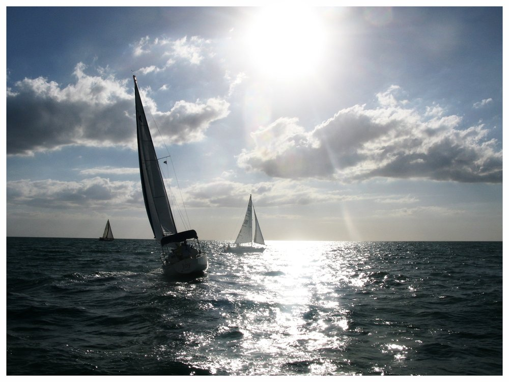 The Venice Sailing Squadron organizes races and regattas in the Gulf of Mexico off Casey Key.