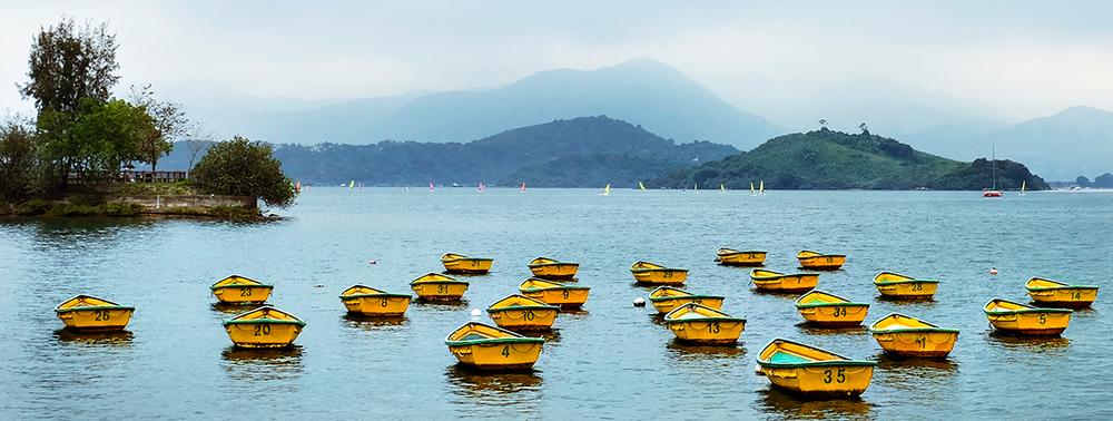 Yellow Boats Small.jpg
