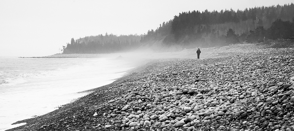 Foggy Coastal Walk Small.jpg