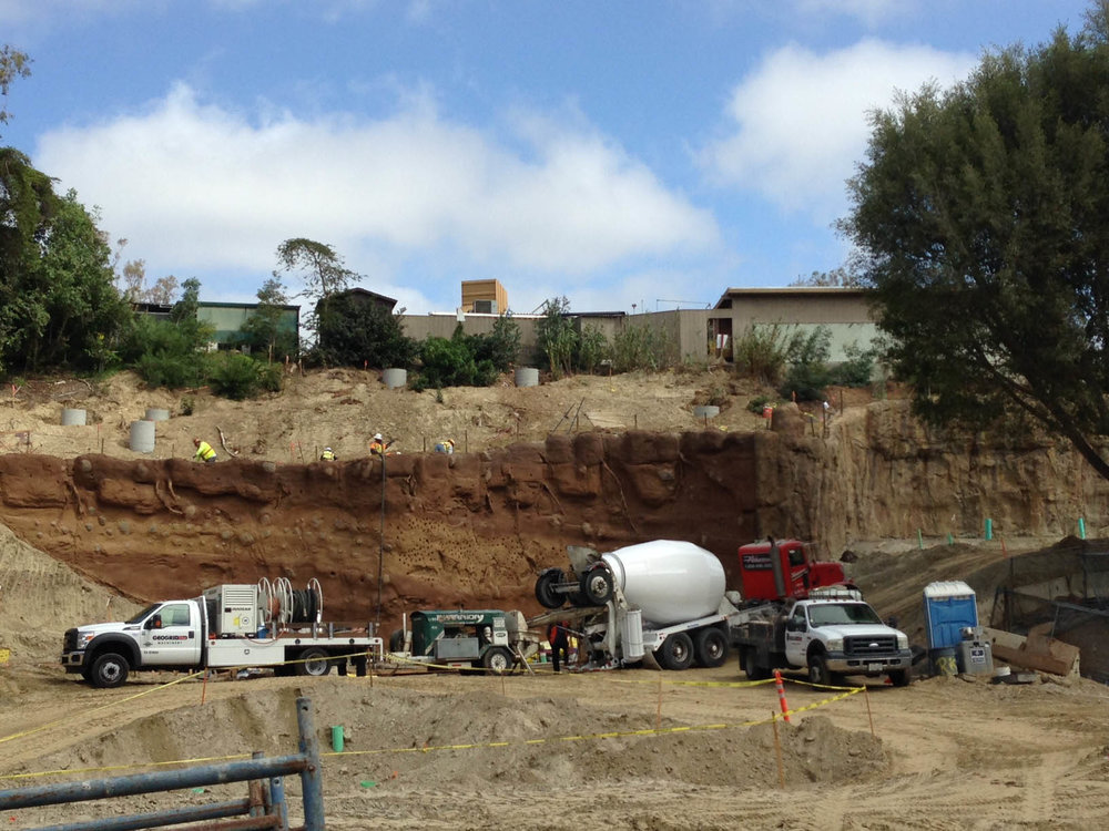20-construction-San-Diego-Zoo-Africa-Rocks-ELM-zoological-habitat-exhibit-design.jpg