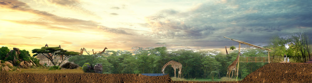 Rendering of proposed new Utica Zoo giraffe habitat by ELM Environments