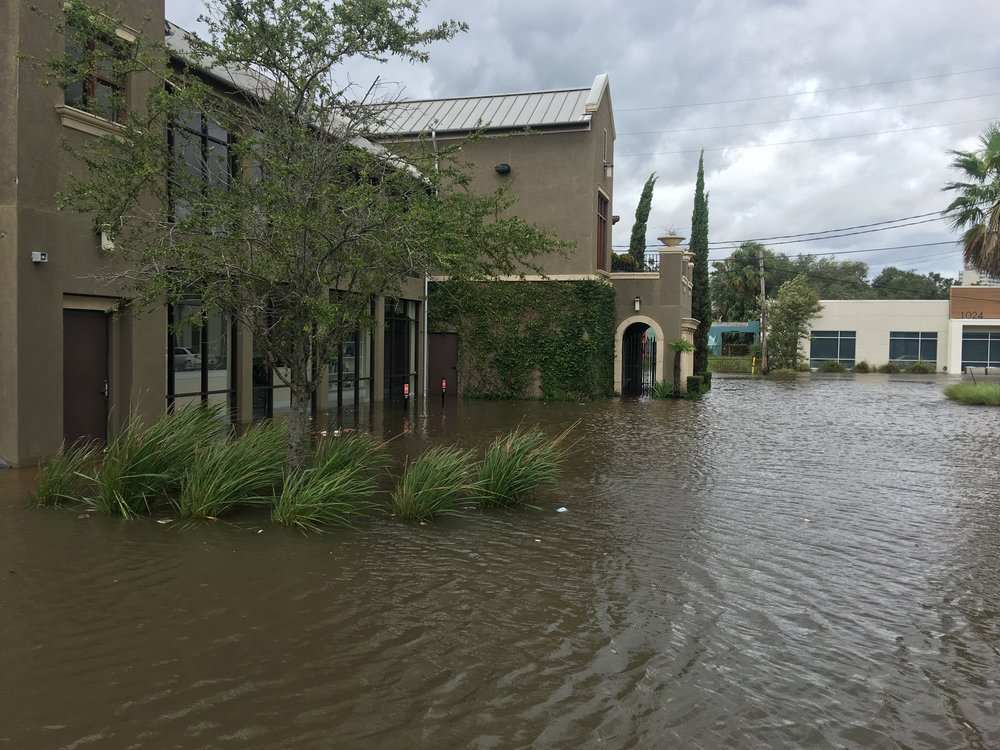 ELM's Jacksonville Studio experienced flood damage when high tides and storm surge from Hurricane Irma caused the nearby St. Johns River to flood Downtown Jacksonville and adjacent urban neighborhoods.
