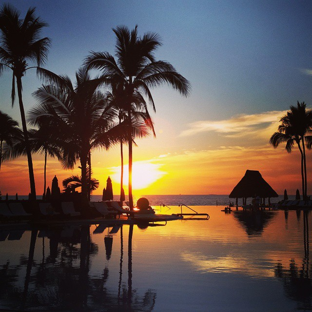Photo by Dawn Taute - Puerto Vallarta, MX