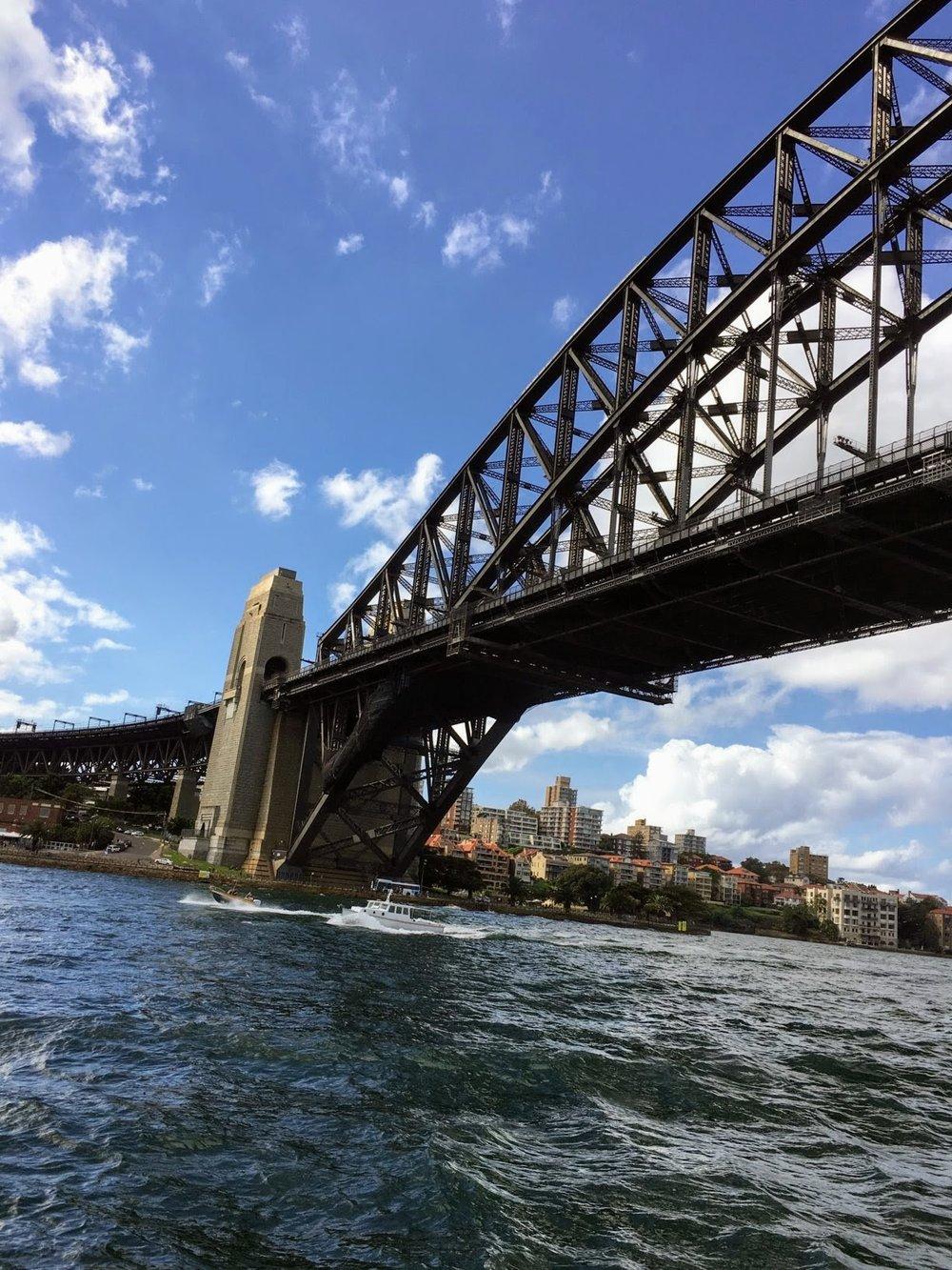 Sydney Bridge and Harbour