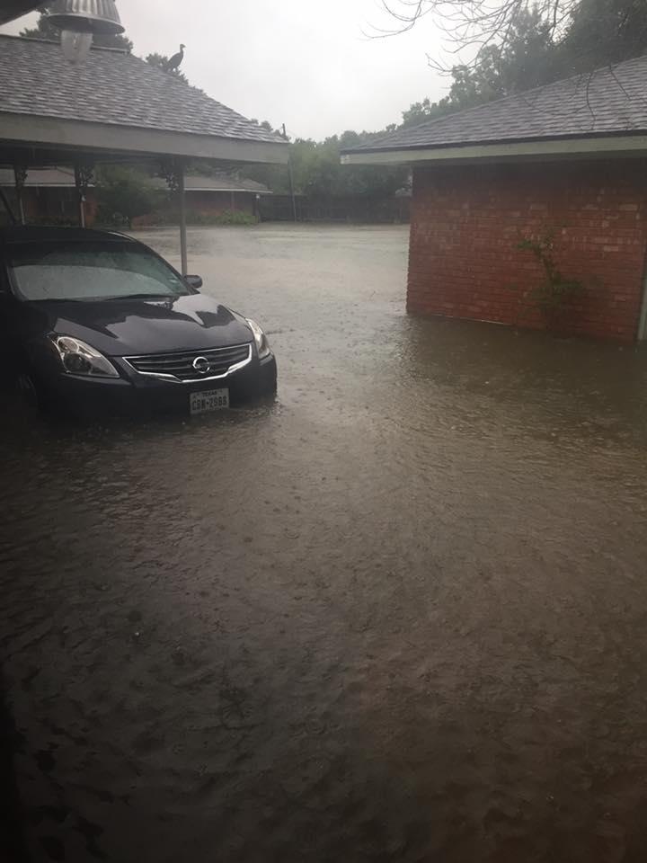 elizabeth's car under water.jpg