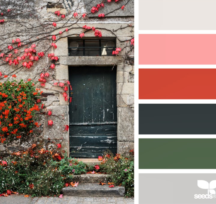 MAJOR INSPIRATION BY: Overall Scheme from @DesignSeeds, Door Image from @myfrenchcountrygarden