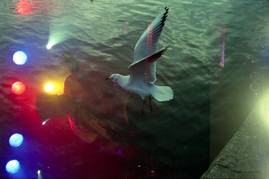 Film Swap:  I swapped a film with Evan Maragkoudakis which was shot entirely in London. The seagull was exposed by him and the Planet of Zeus frame was exposed by me. Evan used the Olympus OM1 vs. Minolta Point and shoot, sharing a Superia 200.