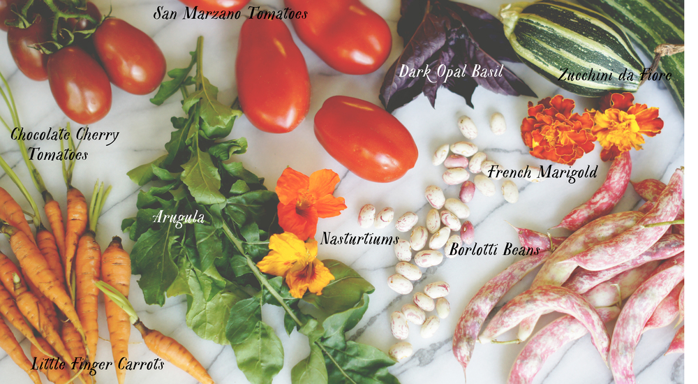 Acanthus House | Labelled Vegetable Collage