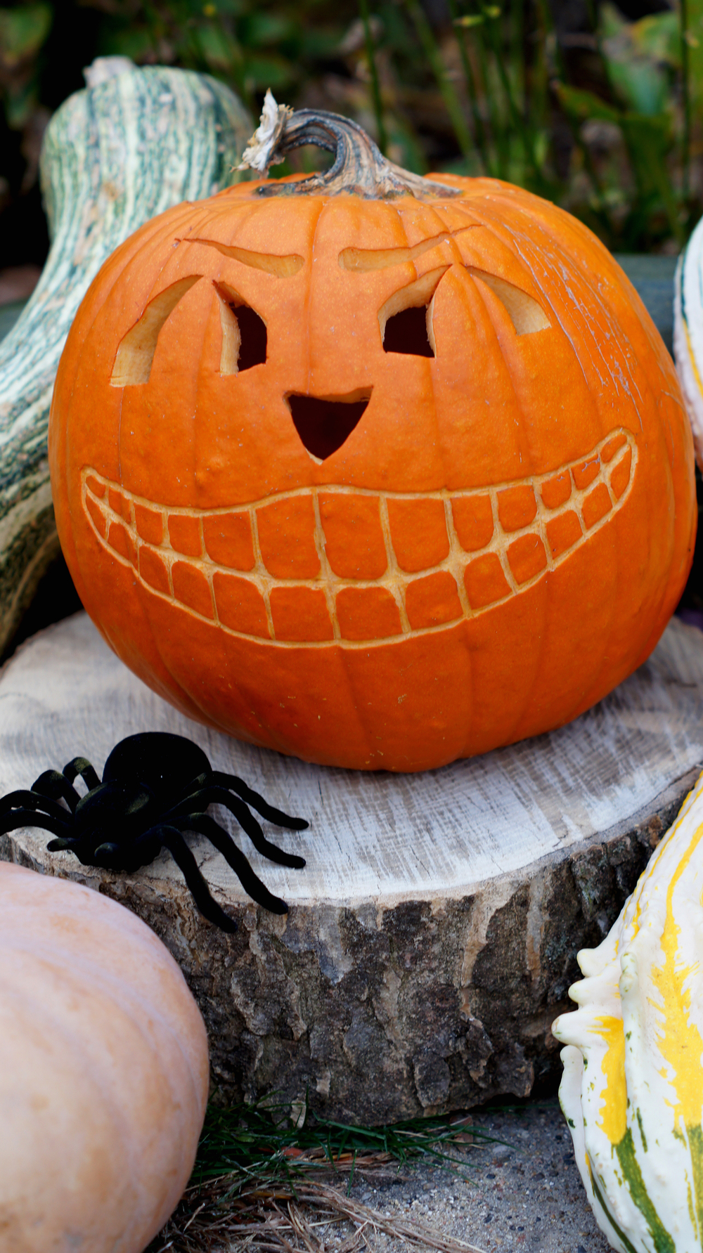 Carved Pumpkin 2.jpg