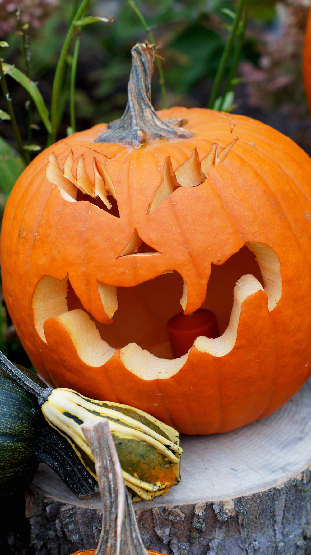Carved Pumpkin 1.jpg