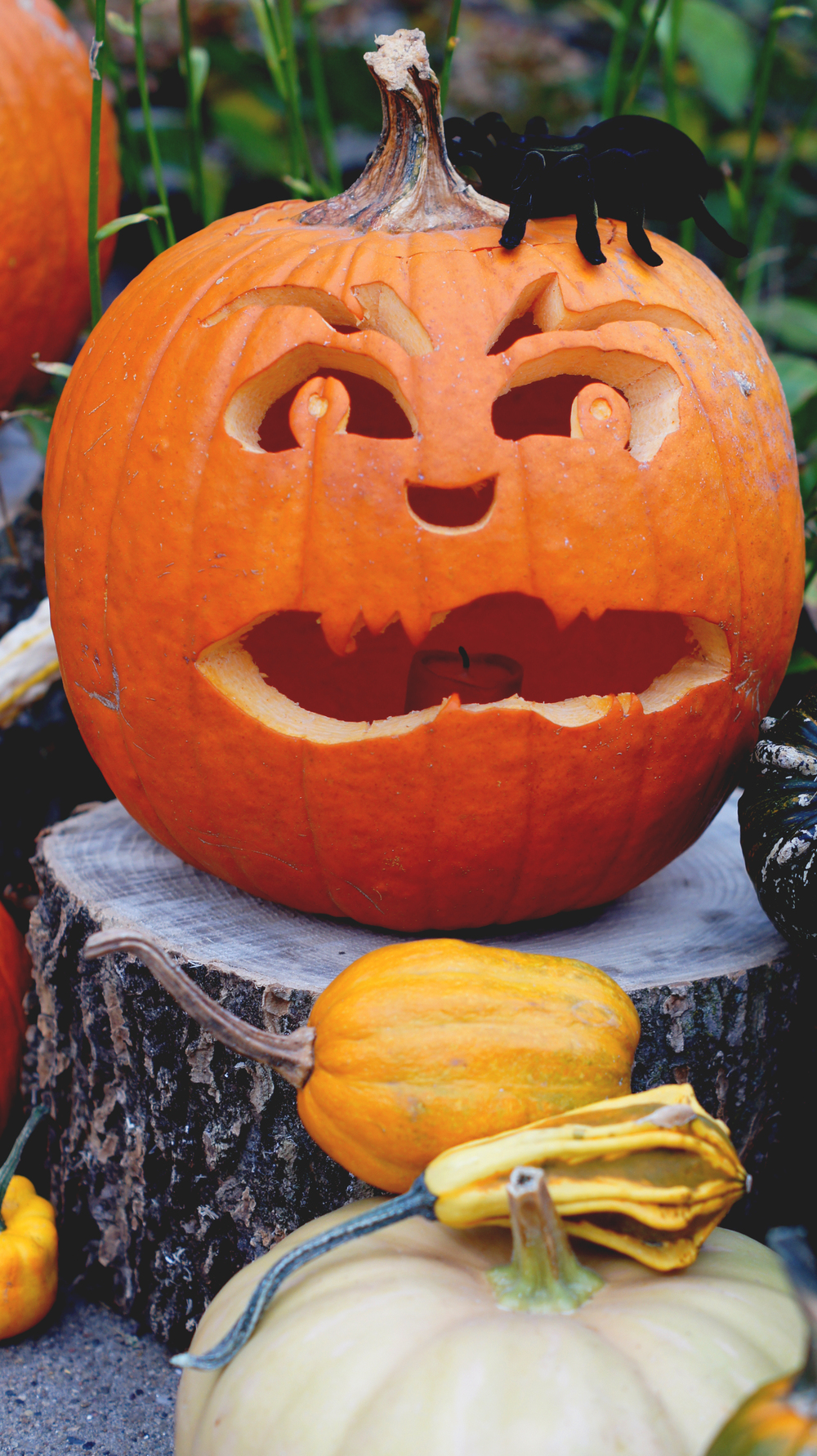 Carved Pumpkin 5.jpg