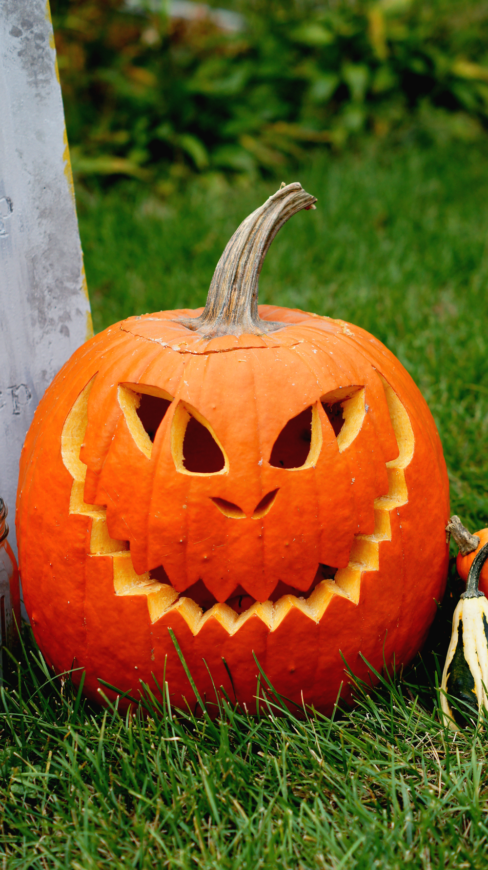 Carved Pumpkin 11.jpg