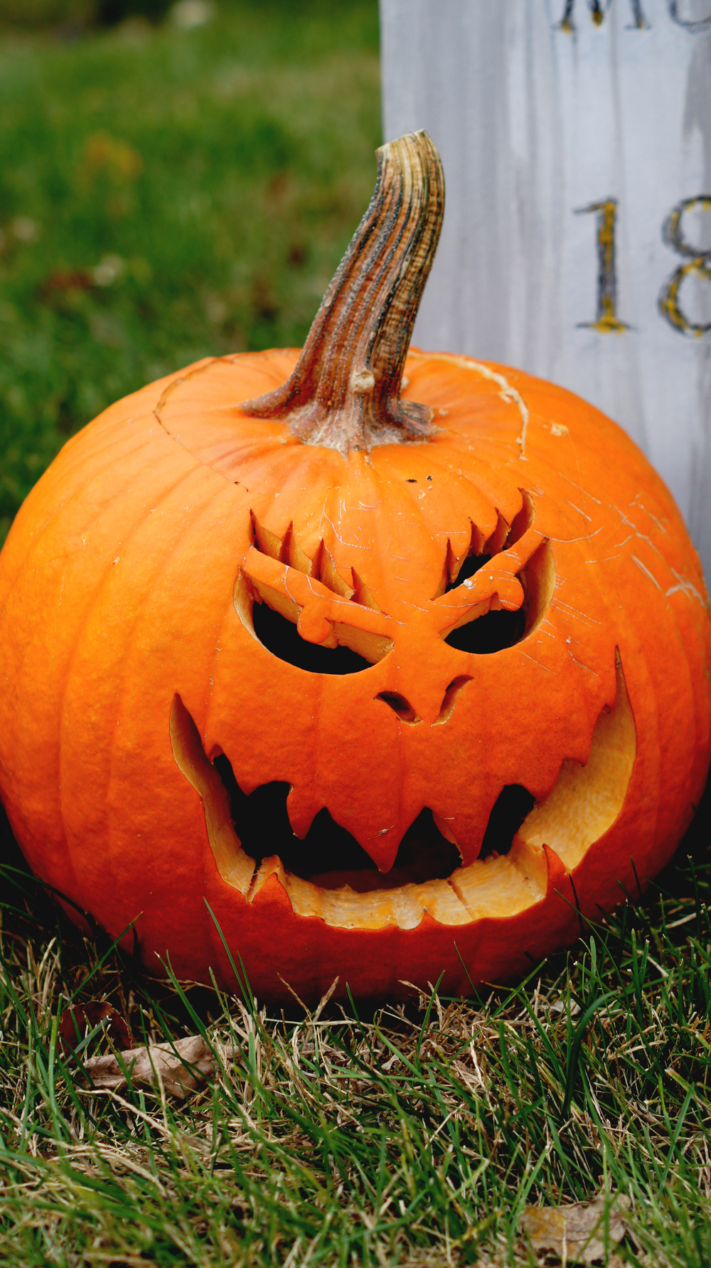 Carved Pumpkin 12.jpg