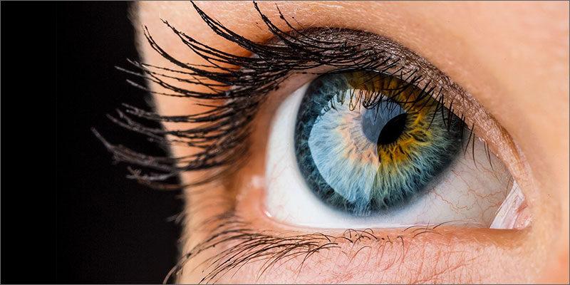 eyes-800x400.jpg