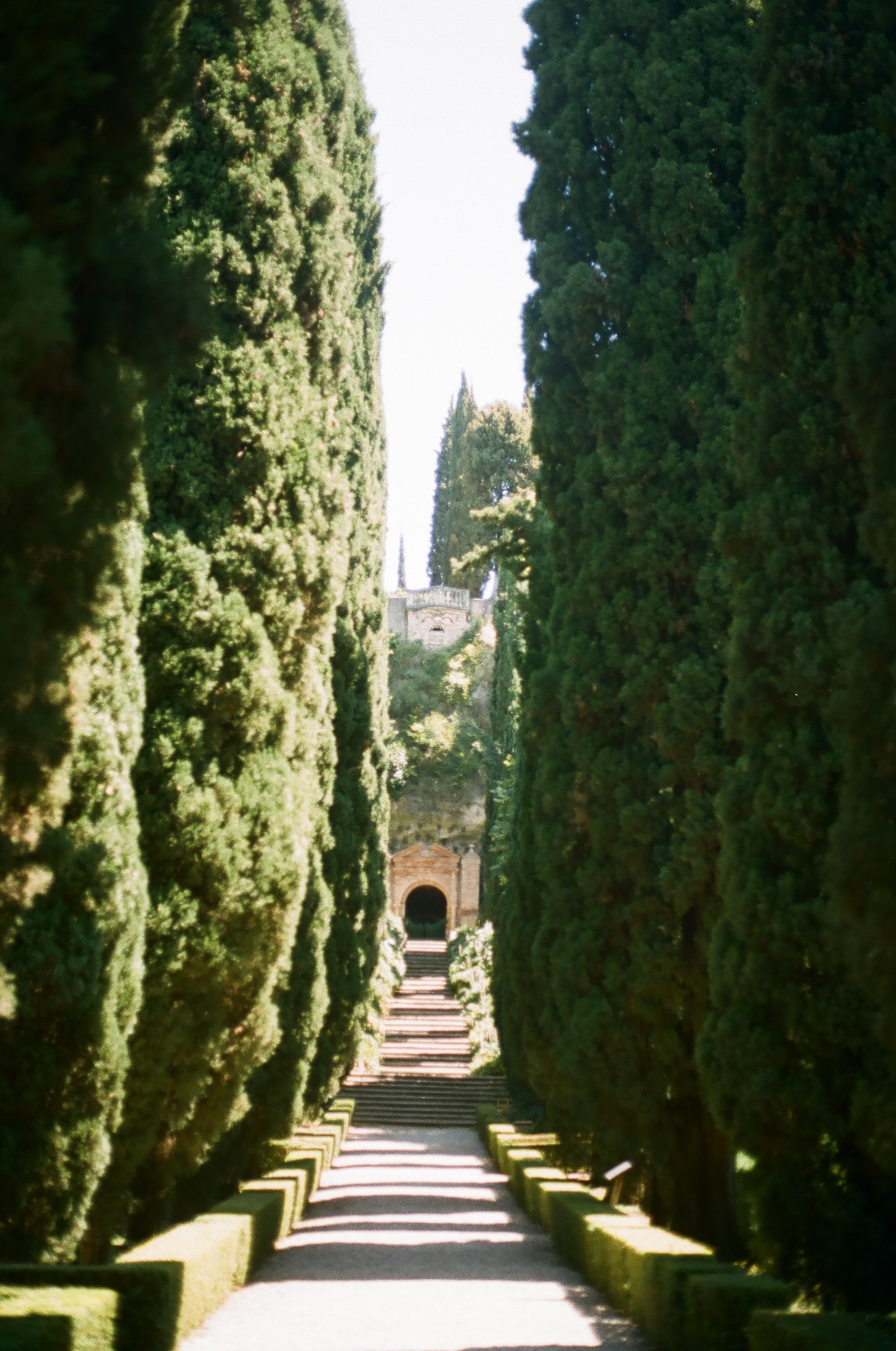 APT_Verona01