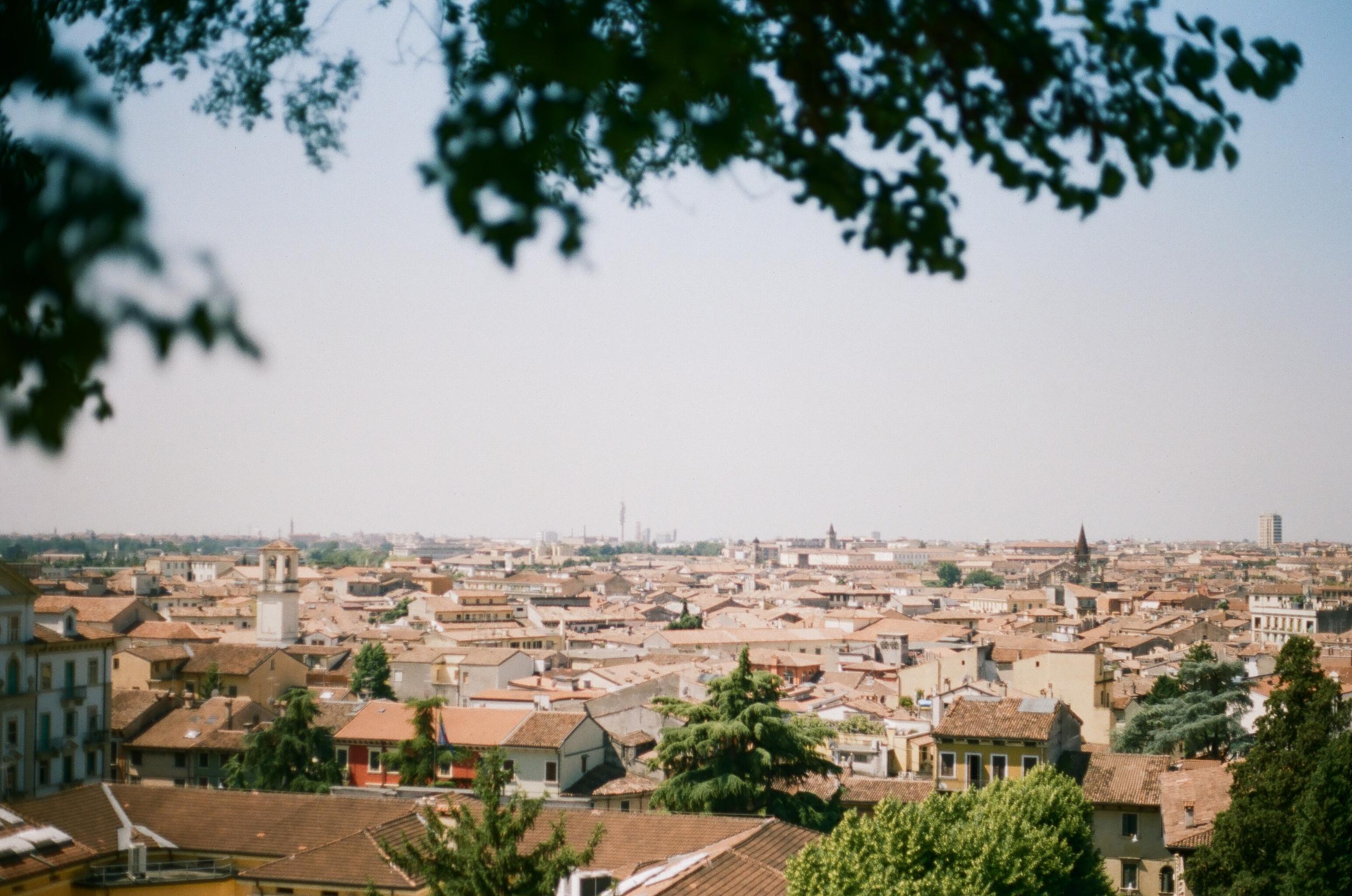 APT_Verona04