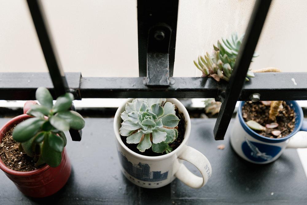 documentary-photographer-midwest-detroit-plants