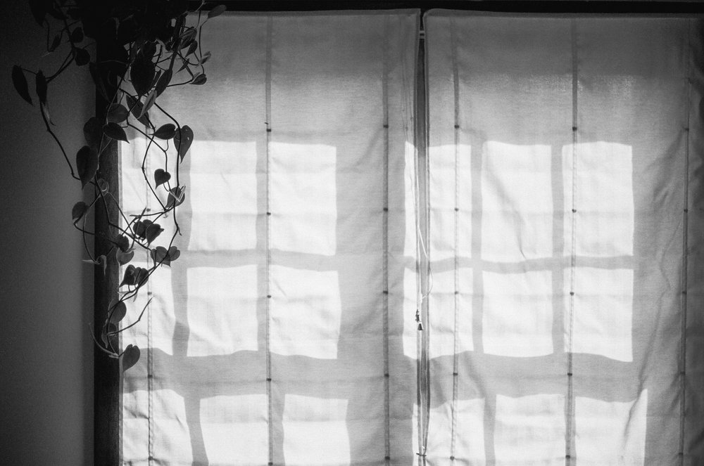 A film photography of light and shadows in a home interior in the Midwest.