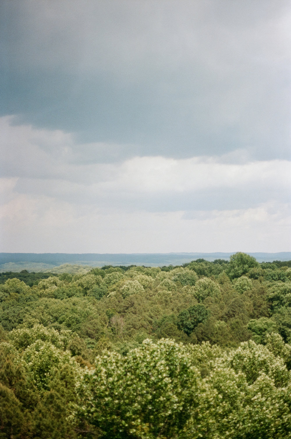 A landscape film photography of the  Hoosier National Forest  in Bloomington, Indiana.