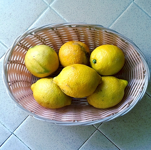 Homegrown lemons? Even better!