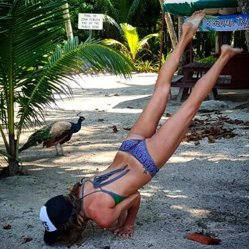 Drunk Peacock