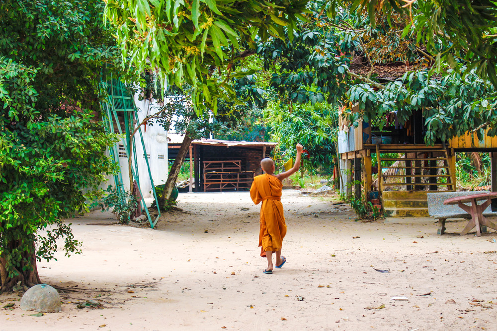 A Young Monk Plays