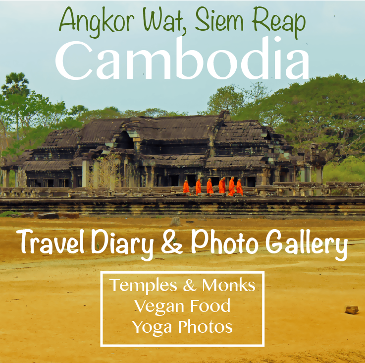 Travel Diary Days 41 - 43: Siem Reap & Angkor Wat, Cambodia (Temple Photo Gallery)