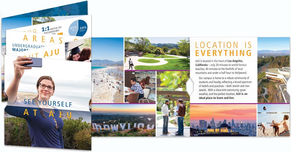 Accordion-Fold Brochure