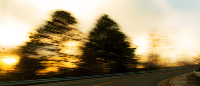 A pair of motion blurred trees from the interior of a moving vechile