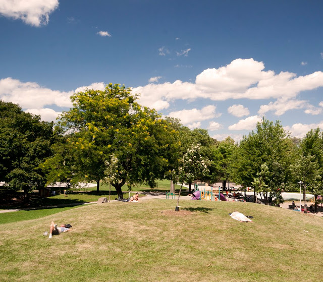 Residents of the Annex area enjoy a warm summer day at Christie Pits Park