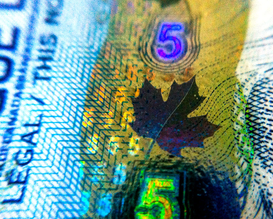 The Maple Leaf on a Canadian Five Dollar Bill
