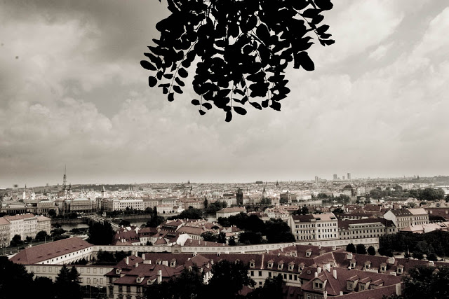 The cityscape in Prague