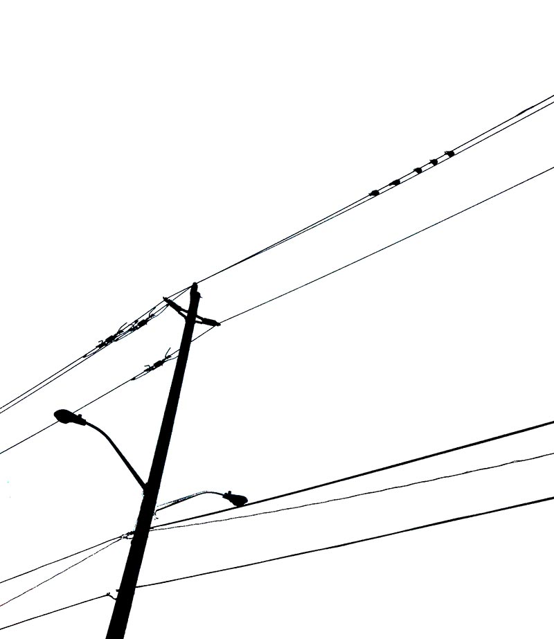 Birds on an electric wire on the iPhone 4