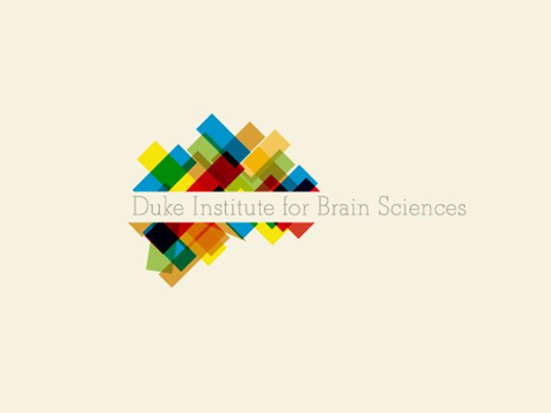 Brain_2.jpg