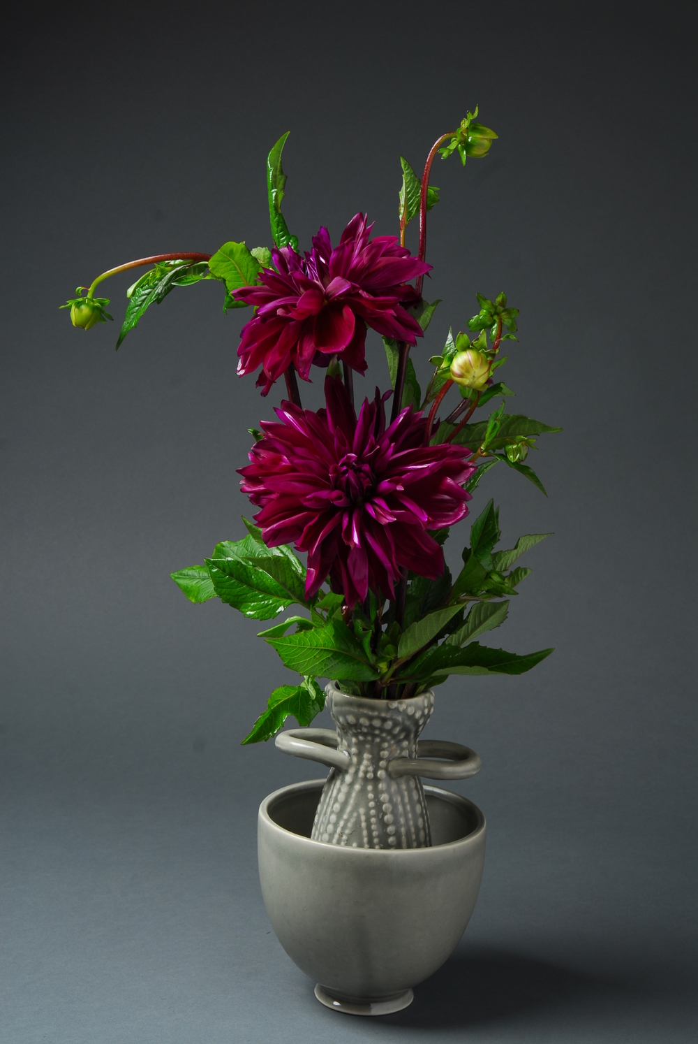 Purple dahlia in small gray vase with side handles