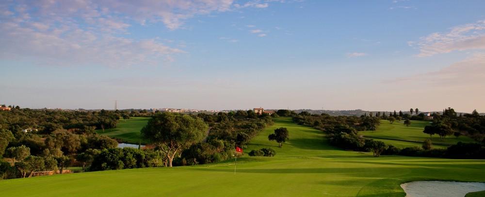 Espiche Golf_#2 Green from Behind_D823736 web.jpg