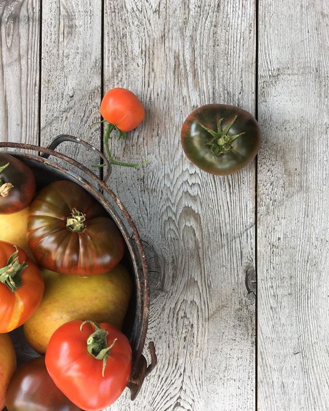 Summer colors in a bowl #food #tomatoes #farmfood #garden