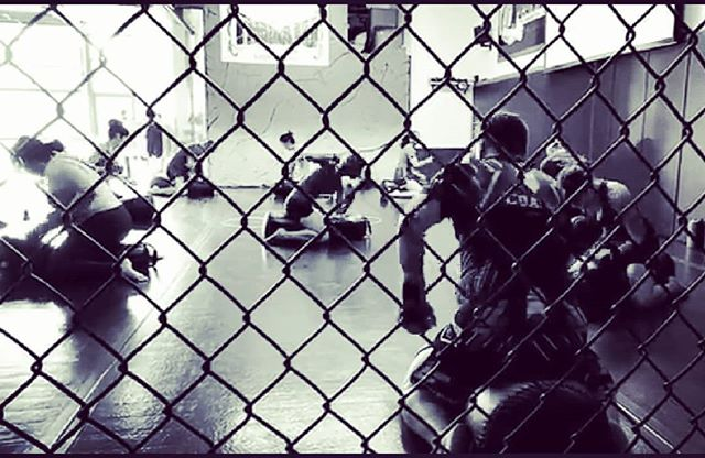 Join Coach Nguyet, Coach Timothy and Coach Jenny for a special farewell Cage Fitness class this Friday, March 30 at 6:00 p.m. We will ground-n-pound our last Friday with a Cage Rage class followed by a social gathering at Barley Forge! Space is limited so reserve your spot!  This March 31st will be the last day of Five Elements MMA & Fitness in Costa Mesa. It will be a bittersweet time for us but know our journey with fitness doesn't end here and we look forward to what exciting and creative adventures the future holds!  We want to thank all of those who have supported our gym throughout the 12 years of its existence and letting us serve you, and there's too many of you for me to tag 😉. It has been a very humbling and proud experience for us to see our clients flourish and maintain a healthy lifestyle. Stay strong! Stay fit! Stay healthy and may you find joy in whatever you decide to do!  #beersandcheers #lastgroundnpound #onedoorclosesanotheropens #thankyoufromthebottomofourhearts #cagerage #cagefitness #thanksforthememories