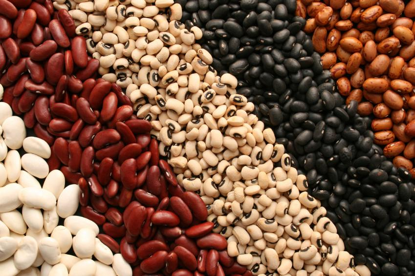 Whole Beans - One of the best fat burning food.