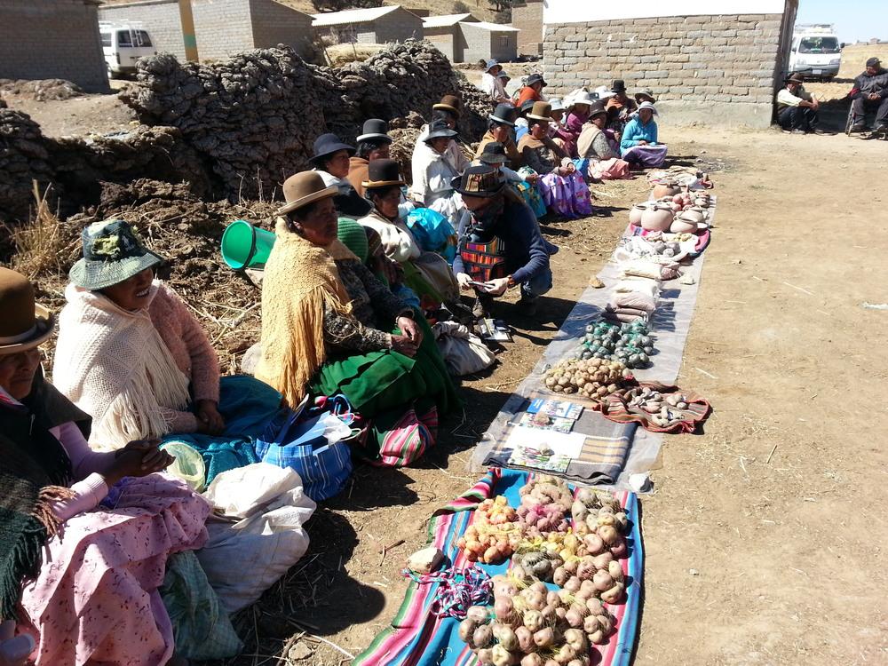Comunidades de Práctica para Investigación Agrícoloa - Evaluación de Desarrollo