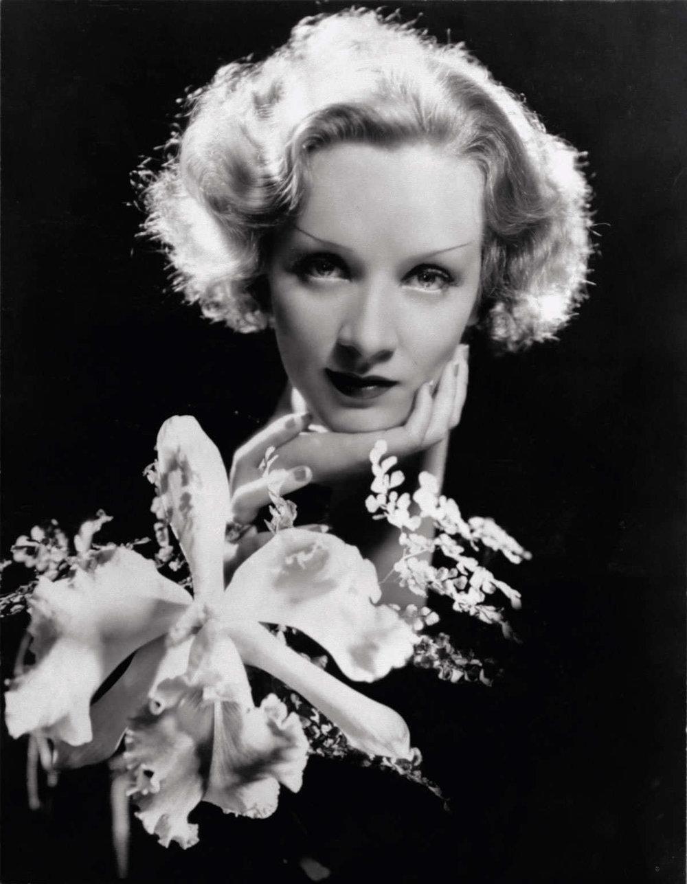 Marlene Diectrich 1930.jpg