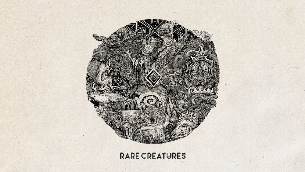 rare creatures album cover.jpg