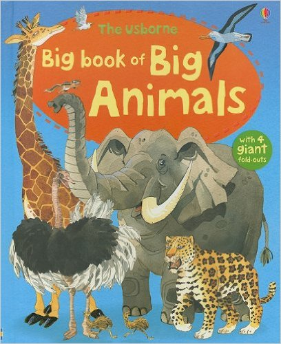 usborne animals.jpg