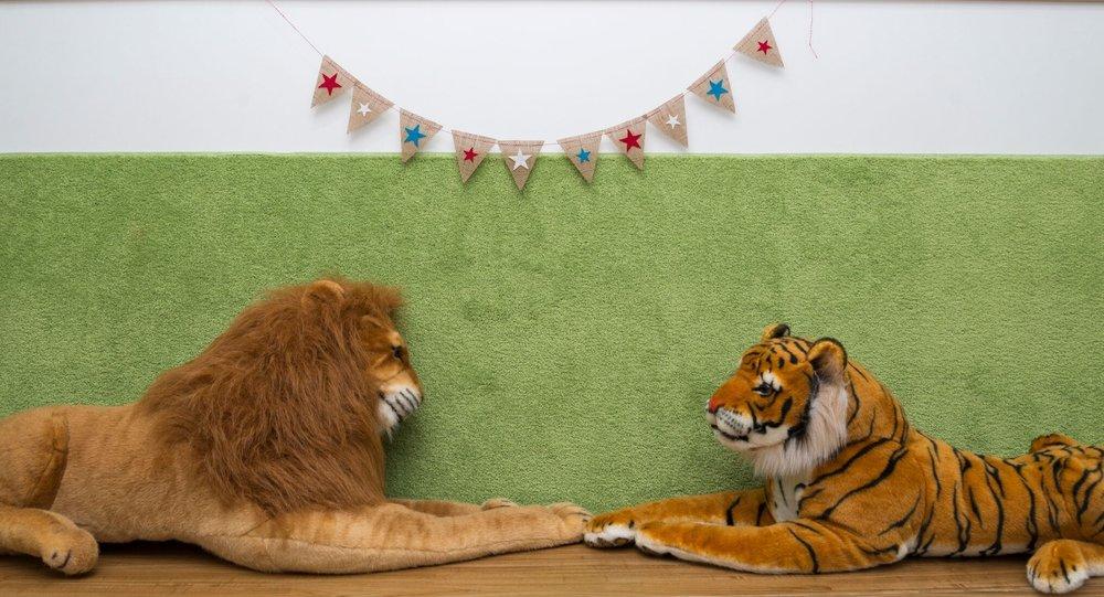 2 lion tiger.jpg