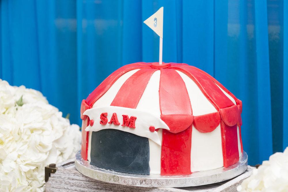 Sam's Birthday Party_129.jpg