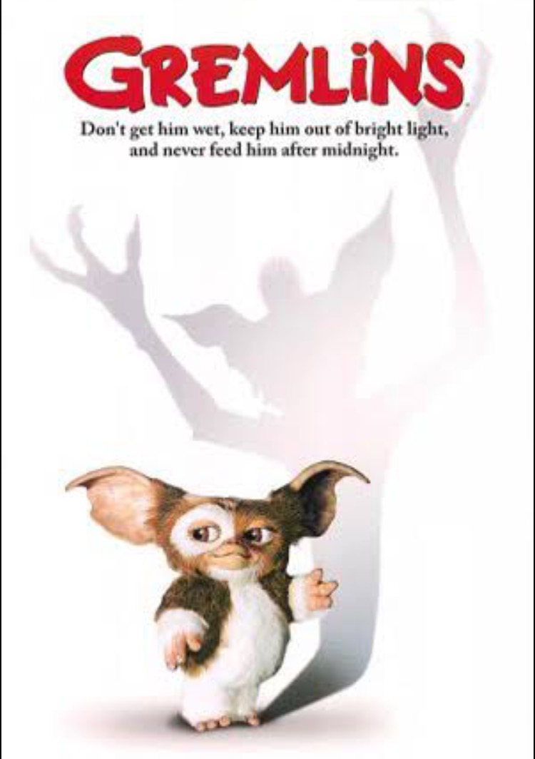 Your kid is going to want a Gizmo, I want 5.