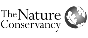 TNC_logo_02.png