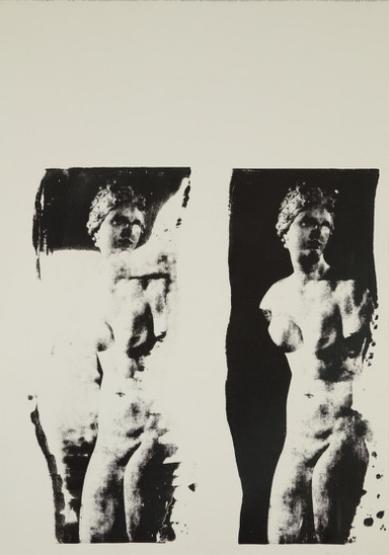 Aphrodite Doubled   Unique Photo Silk Screen 24 x 18 inches
