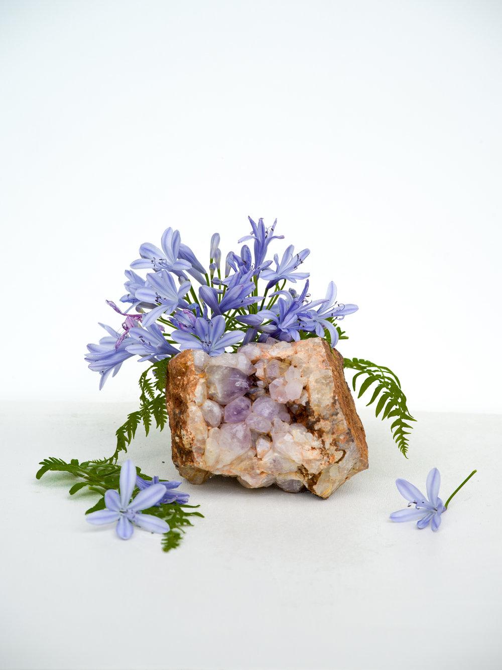amathyist blue flower fern-1-2.jpg