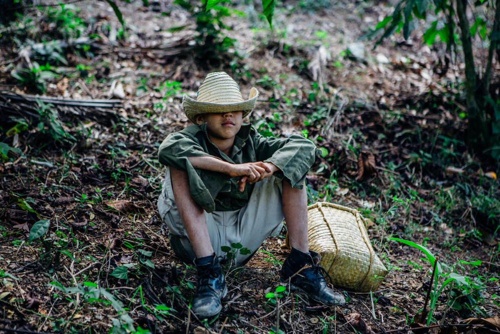 Emmanuel, the 12 year old Coffee farmer in Sierra Maestra